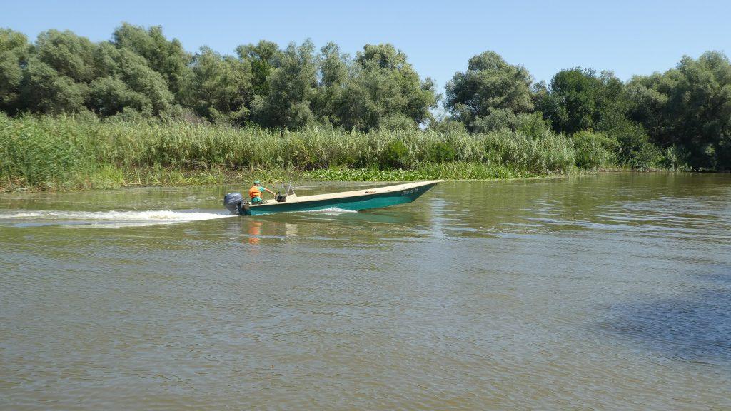 Wolgadelta