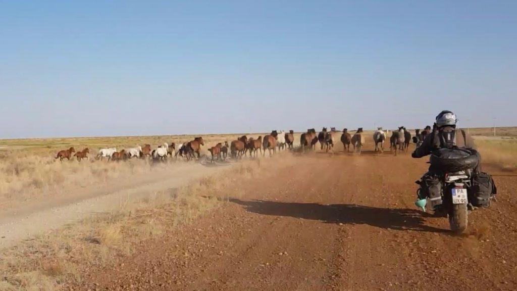 Aralsee 2