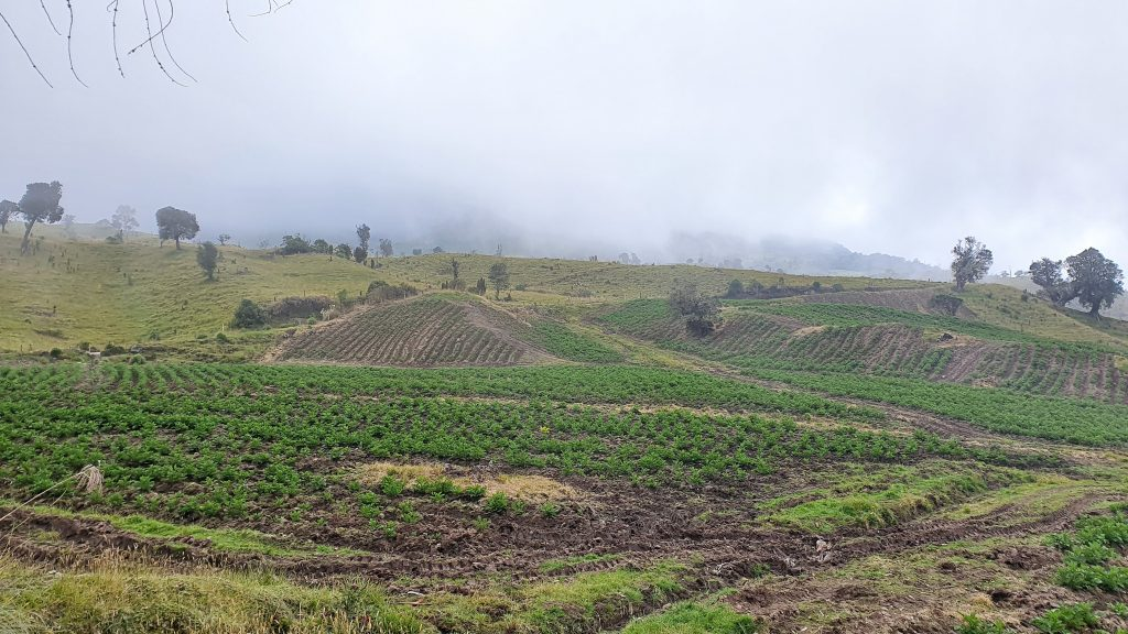 Gemüseanbau auf 3.000m